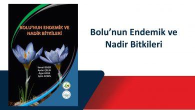 Photo of Bolu'nun Endemik ve Nadir Bitkileri