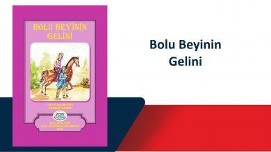 Photo of Bolu Beyinin Gelini