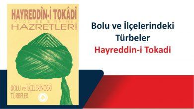 Photo of Hayreddin-i Tokadi Hazretleri