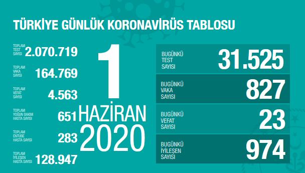 Screenshot_2020-06-01 T C Sağlık Bakanlığı Korona Tablosu